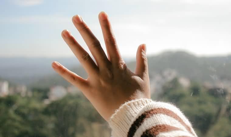 手部关键点识别_手部检测_关键点定位