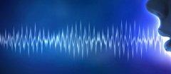 Sonde Health购买了NeuroLex Labs的语音平台和部分生物特征样本